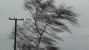 шторм Прикарпаття вітер