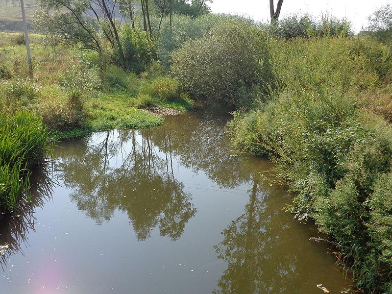 річка Тлумач (Товмачик)