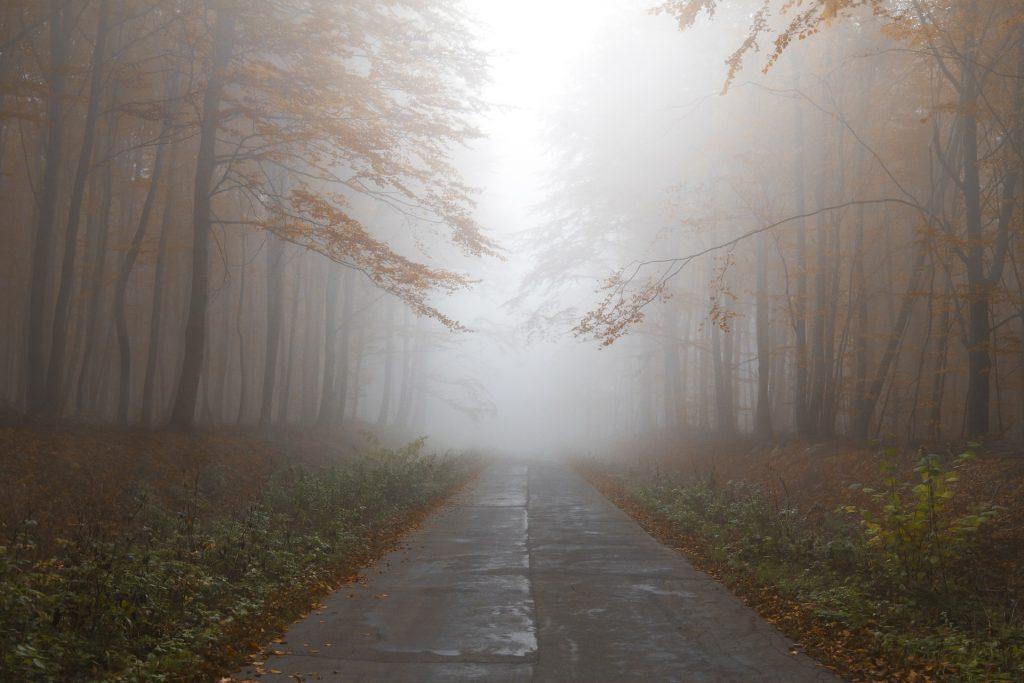 осінь, туман