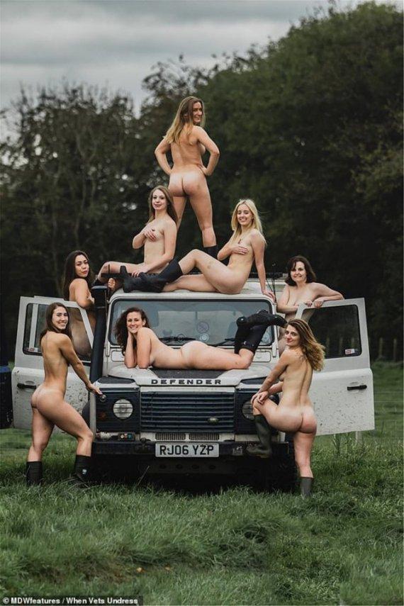 голі дівчата, календар
