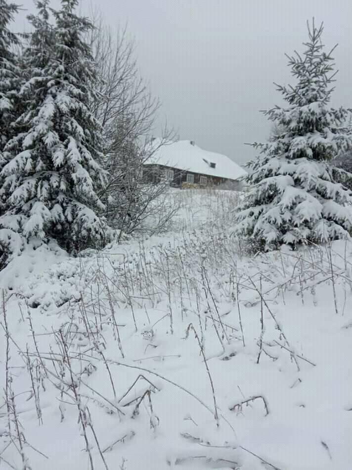 сніг, Карпати