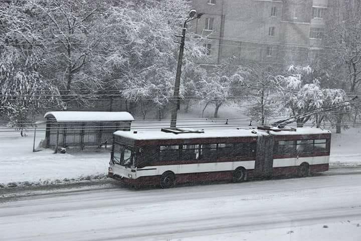 тролейбус Франківськ