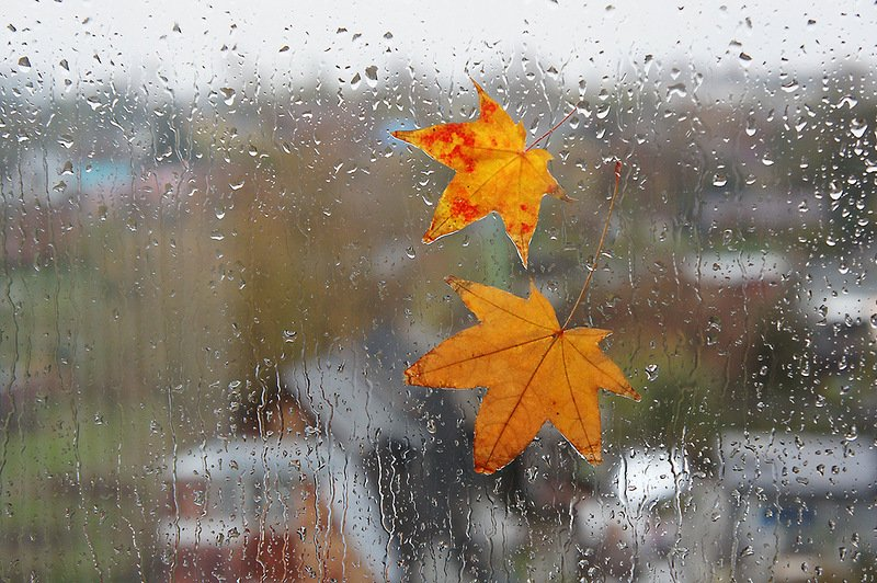 погода, осінь, дощі