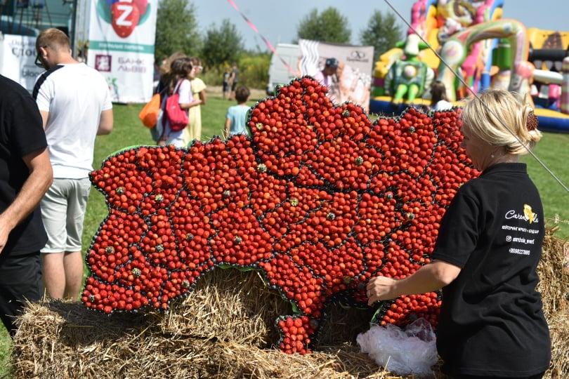 Zahid Berry Fest