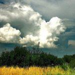 погода на Прикарпатті